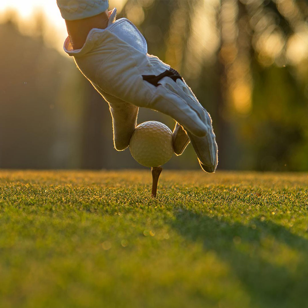 Golf and Other Sports